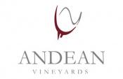 Andean vineyard