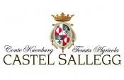 Castel Salleg