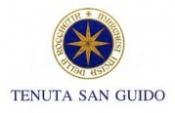 San Guido