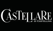 Domini Castellare di Castellin
