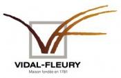 Vidal Fleury