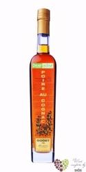 """Godet """" Pearadise """" Poire au cognac liqueur 38% vol.   0.05 l"""