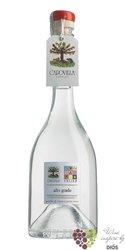 """Alto Grado  """" Albicicche del Vesuvio """" distilleria Vitorio Capovilla 49% vol. 0.50 l"""