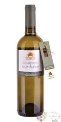 """Rulandské šedé & Chardonnay """" Velký Sonberk """" 2011 pozdní sběr vinařství Sonberk Popice   0.75 l"""
