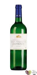 Sauvignon 2005 jakostní odrůdové víno z vinařství Modrý sklep    0.75 l