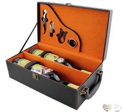 Box na 2 láhve z umělé kůže s příslušenstvím