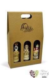 """Paper box """" Natur """" for 3 bottles"""