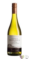 "Chardonnay "" Reserva "" Casablanca valley Doc Castillo di Molina by San Pedro  0.75 l"