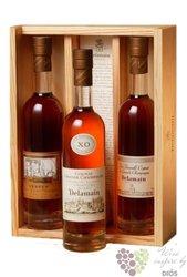 """Delamain """" XO Trio """" Grande Champagne Cognac 40% vol.   3x0.20 l"""