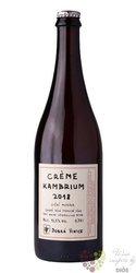 """Creme de Vin """" Kambrium """" 2018 vinařství Dobrá Vinice  0.75 l"""