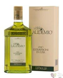 "Olio "" Laudemio "" 2019 extra vergine di oliva by Marchesi de' Frescobaldi  0.50l"