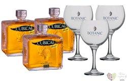 "Botanic W&H "" Cubical Mango "" glass set Spanish flavored gin 37.5% vol. 3x0.70 l"