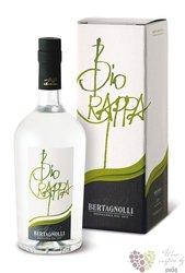 "Grappa Trentina bianca "" Bio "" distilleria G.Bertagnolli 40% vol.    0.70 l"