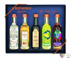 "Gift set "" Perle blu frutta "" collection of minibottles by destileria G.Bertagnolli  5 x 0.05 l"