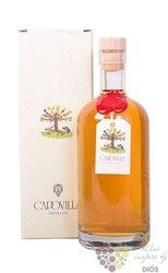 """di Vino  """" Brandy """" distileria Vitorio Capovilla 42% vol.  0.50 l"""