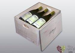 Dřevěná kazeta na 6 lahví s motivem vinařství Gotberg v Popicích