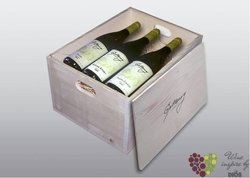6 lahví vína v dřevěné kazetě motivem vinařství Gotberg v Popicích