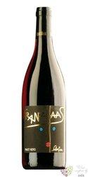 "Pinot nero "" Schweizer "" 2010 Sudtirol - Alto Adige Doc cantina Franz Haas     0.75 l"