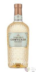 Amarone della Valpolicella classico Doc 2007 azienda Remo Farina    0.75 l