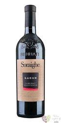 "Cabernet Sauvignon Veneto "" Gadum ""  Igt 2016 linea Soraighe casa vinicola Bennati  0.75 l"