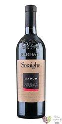 "Cabernet Sauvignon Veneto "" Gadum ""  Igt 2018 linea Soraighe casa vinicola Bennati  0.75 l"