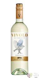 """Pinot grigio """" Vivolo di Sasso """" Igt 2018 casa vinicola Botter Carlo  0.75 l"""