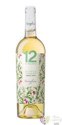 """Puglia bianco organic """" 12 e mezzo """" Igp 2015 Varvaglione vigne e vini  0.75 l"""