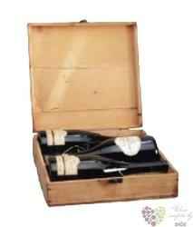 Kufřík dřevěný s motivem vinařství Tanzberg určený pro 2 - 4 láhve