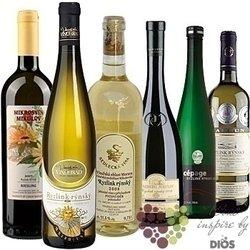 """Kolekce vybraných bílých vín jedné odrůdy """" Moravian Riesling """"      6 x 0.75 l"""
