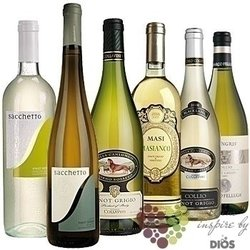 """Kolekce vybraných bílých vín jedné odrůdy """" Pinot Grigio """"      6 x 0.75 l"""