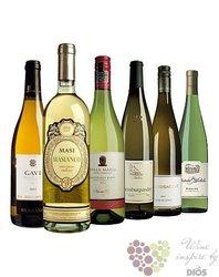 """Kolekce vybraných bílých vín v ceně do 300 kč"""" Price x Quality I """"       6 x 0.75 l"""