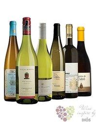 """Kolekce vybraných bílých vín v ceně do 500 kč"""" Price x Quality I """"       6 x 0.75 l"""