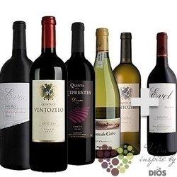 """Kolekce vybraných vín jednoho vinařství """" Portugal - Real Compania Velha - Douro """"     6 x 0.75 l"""