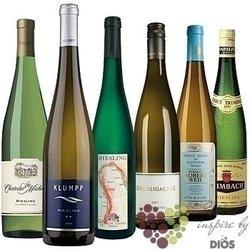 """Kolekce vybraných bílých vín jedné odrůdy """" Riesling """"      6 x 0.75 l"""