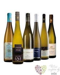 """Kolekce vybraných bílých německých vín jedné odrůdy """" Riesling z Mosely """"   6 x0.75 l"""
