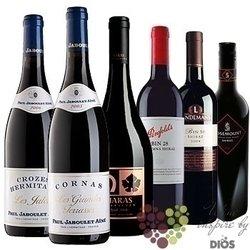 """Kolekce vybraných červených vín jedné odrůdy """" Syrah """"    6 x 0.75 l"""