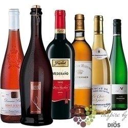 """Kolekce vín podle chuti """" Sweet """" karton vybraných sladkých vín    6 x 0.75 l"""