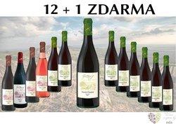Víno z vinařství Gotberg 12+1 lahev za jedinou korunu