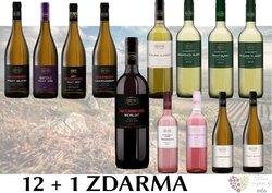 Víno z vinařství Reisten 12+1 lahev za jedinou korunu