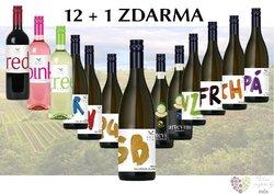 Víno z vinařství Arte Vini 12+1 lahev za jedinou korunu