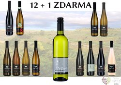 Víno z vinařství Lahofer 12+1 lahev za jedinou korunu