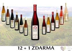 Víno z vinařství Regina Coeli 12+1 lahev za jedinou korunu