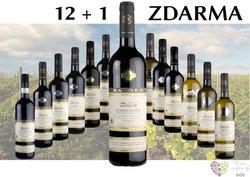 Víno z vinařství Baloun 12+1 lahev za jedinou korunu