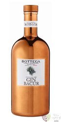 Bacur Italian floral gin by Bottega 40% vol.  1.00 l