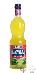"Fabbri Mixybar "" Mint "" Italian mixed berry coctail syrup 00% vol.   1.00 l"