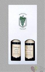Kartonová krabička 2 x 0.75 l s motivem vinařstí Moravíno Valtice