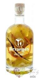 """Arrangés de Ced """" Ananas """" flavored rum by Cédric Brément 32% vol.  0.70 l"""
