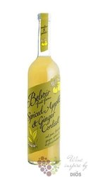 """Belvoir cordial """" Spiced apple & ginger """" English coctail syrup 00% vol.    0.50 l"""