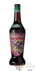 """Vedrenne """" Backcurrant """" French fruits coctail syrup 00% vol. 1.00 l"""