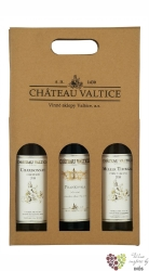 Kartonová krabička 3 x 0.75 l s motivem vinařstí  Vs Valtice